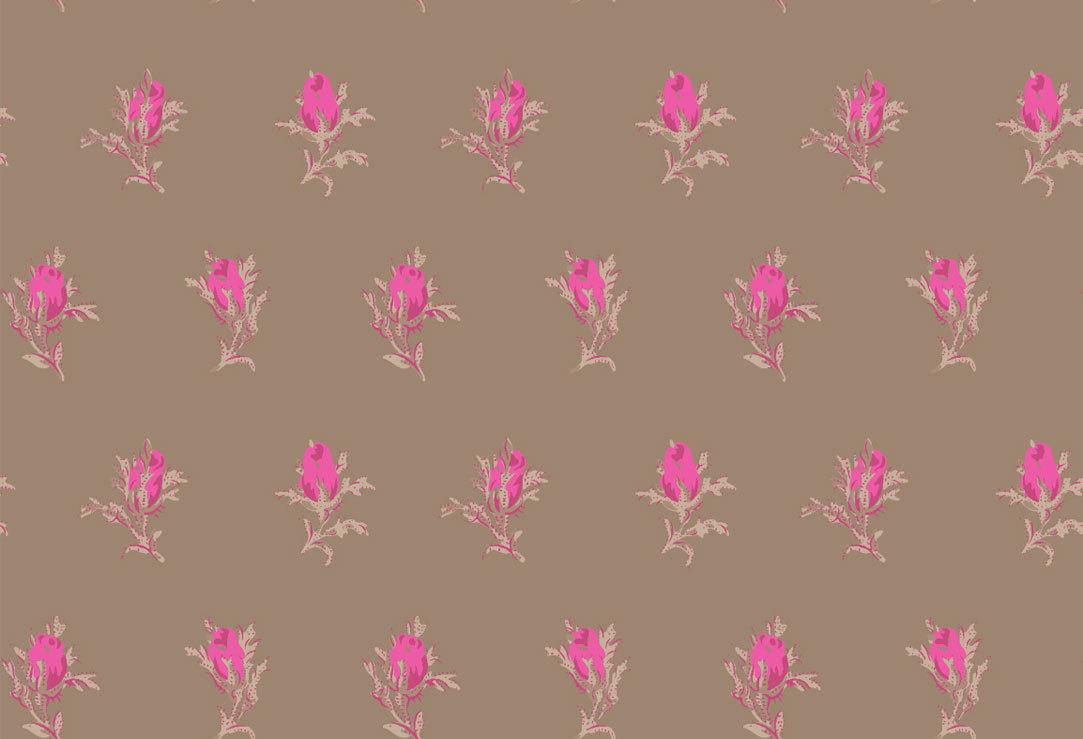 Обои Cole & Son Collection of Flowers 81/4017, интернет магазин Волео