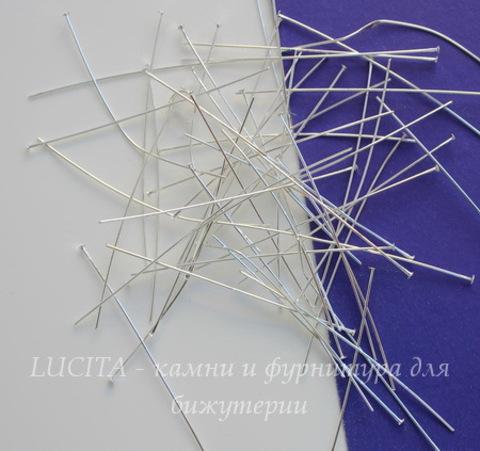 Комплект пинов - гвоздиков (цвет - серебро) 50x0,5 мм, примерно 500 штук
