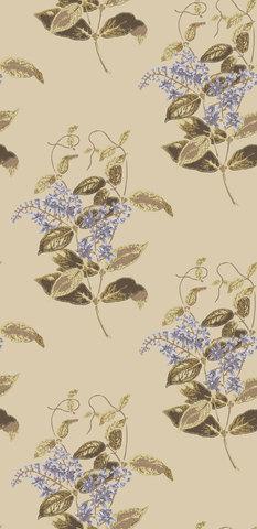 Обои Cole & Son Collection of Flowers 81/6026, интернет магазин Волео