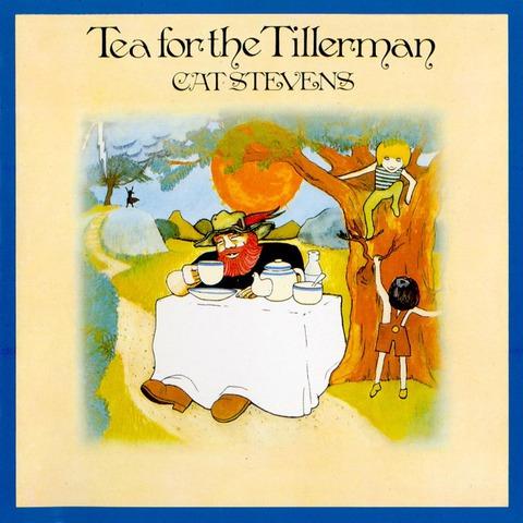 Cat Stevens / Tea For The Tillerman (LP)