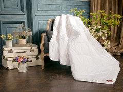 Элитное одеяло легкое 200х220 Ramiewash от German Grass