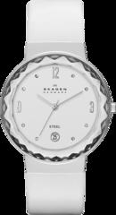 Наручные часы Skagen SKW2003