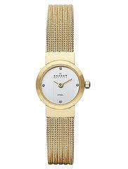 Наручные часы Skagen SKW2009