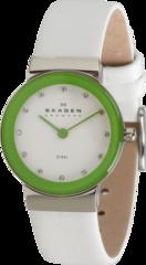 Наручные часы Skagen SKW2024