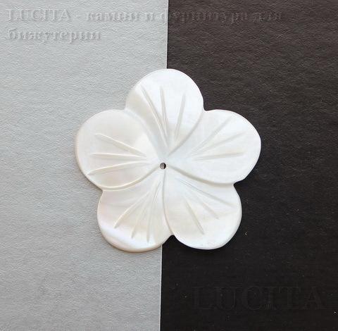 "Кабошон из перламутра ""Цветочек"", 34 мм ()"