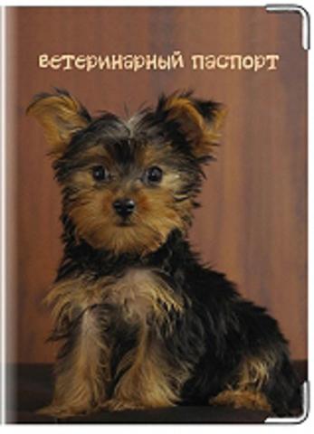 """Обложка для ветеринарного паспорта """"Ветеринарный паспорт"""" (1)"""