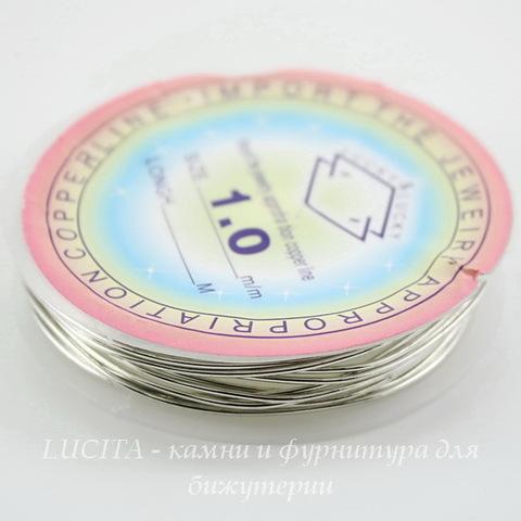 Проволока латунная 1 мм, цвет - серебро, примерно 2,5 метра