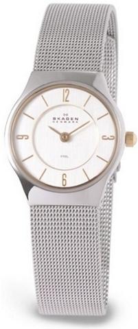 Купить Наручные часы Skagen 233XSGSC по доступной цене