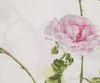 Постельное белье 1.5 спальное Mirabello Scented Rose розовое