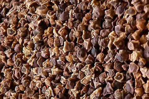 Мангольд семена BIO, 500г (Италия)
