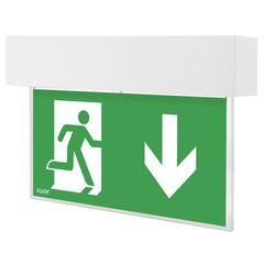 Двухсторонний аварийный светодиодный светильник выход Escape LED Awex