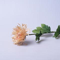 Хризантема искусственная бежевая 6-284