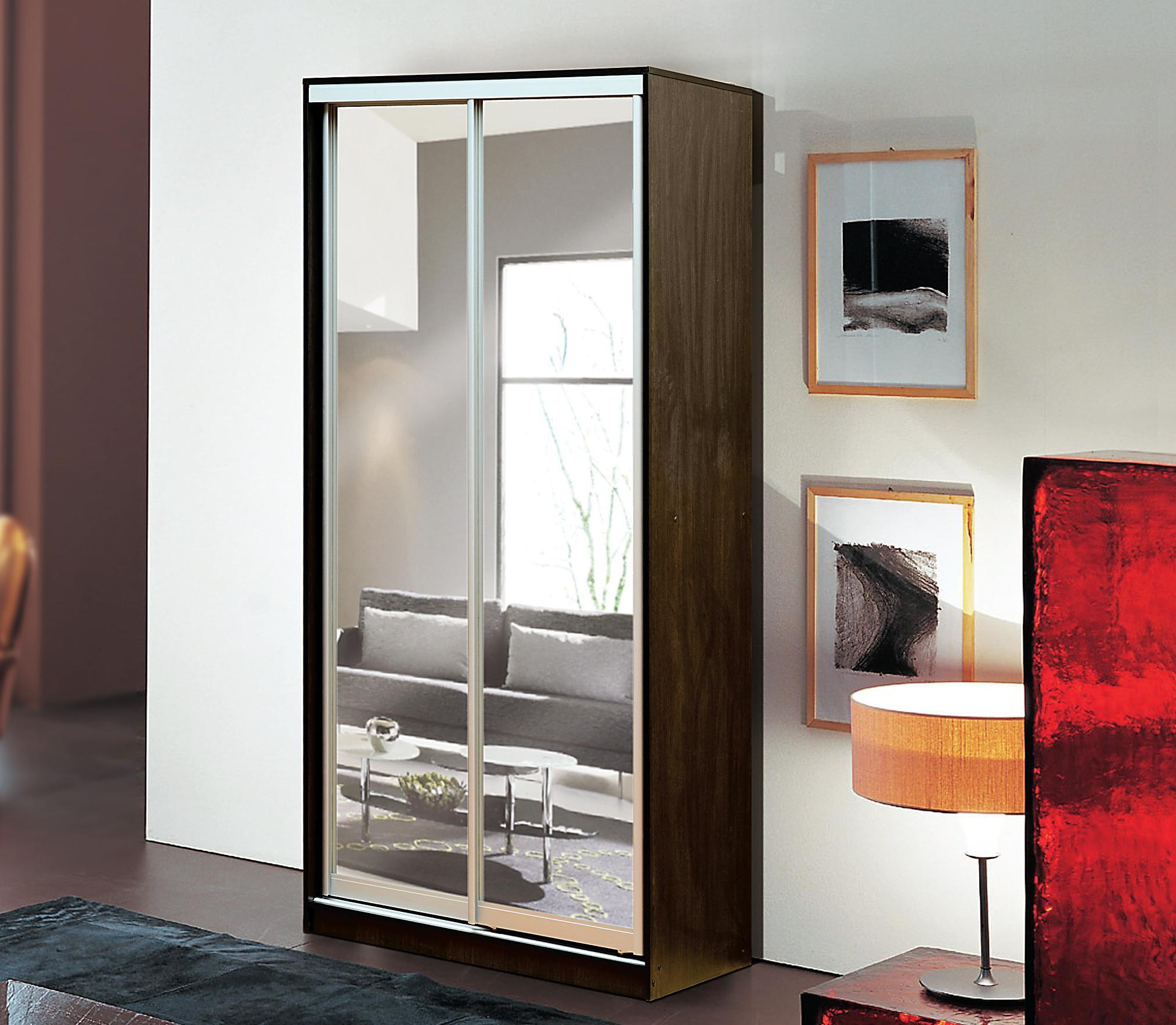 """Шкаф-купе 2-х дверный с дверями из алюминиевого профиля """"мир."""