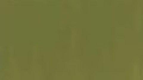 031 Краска Game Color Зеленый камуфляжный (Camouflage Green) укрывистый, 17мл