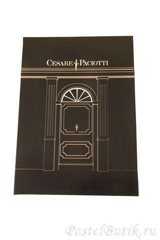 Постельное белье 2 спальное Cesare Paciotti Spase Oddity