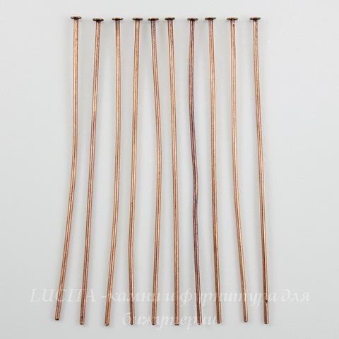 Винтажные пины - гвоздики 51х0,7 мм (оксид меди), 10 штук ()