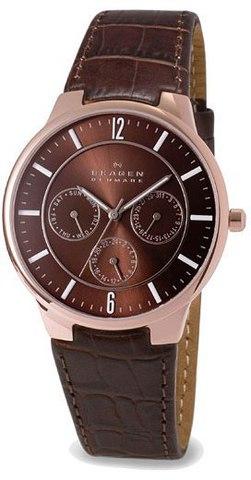 Купить Наручные часы Skagen 331XLRLD по доступной цене
