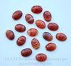 Кабошон овальный Агат Красный с белыми полосками 18х13х6 мм №5