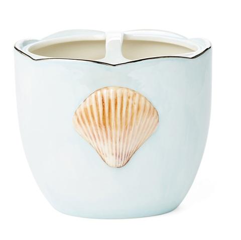 Стакан для зубных щёток Mare Shells Seafoam от Kassatex