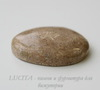 Кабошон Коралл 29,5х23,8х6,3 мм №13