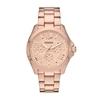 Купить Наручные часы Fossil AM4511 по доступной цене