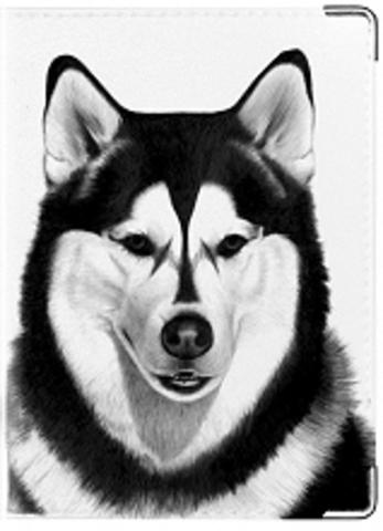 """Обложка для ветеринарного паспорта """"Ветеринарный паспорт"""" (3)"""