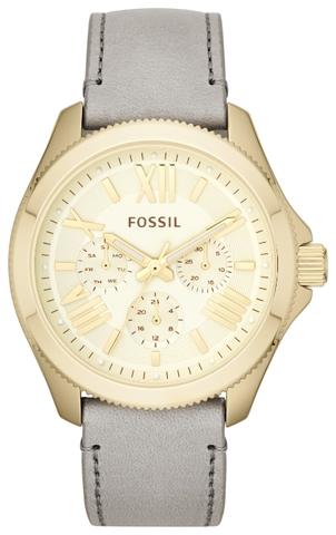 Купить Наручные часы Fossil AM4529 по доступной цене