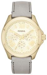 Наручные часы Fossil AM4529