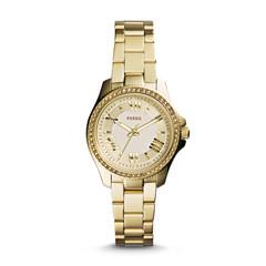 Наручные часы Fossil AM4577