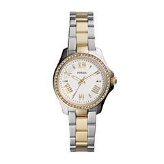 Наручные часы Fossil AM4579