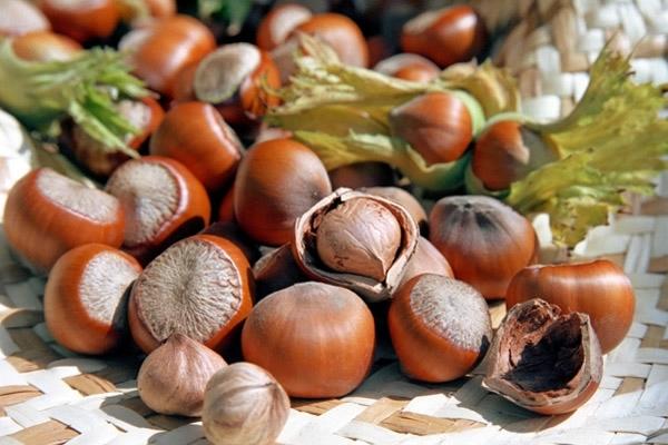 Лесного ореха масло (рафинированное)