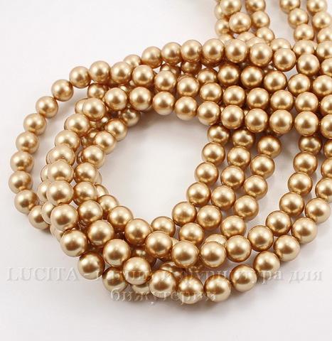 5810 Хрустальный жемчуг Сваровски Crystal Vintage Gold круглый 8 мм , 5 шт