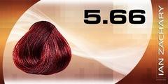5.66 Светлый глубокий красный шатен IAN ZACHARY