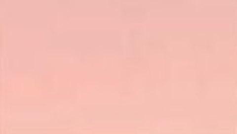 003 Краска Game Color Телесный бледный (Pale Flesh) укрывистый, 17мл