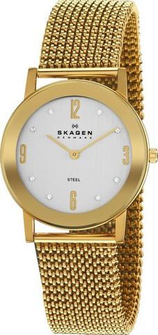 Купить Наручные часы Skagen 39LGG1 по доступной цене