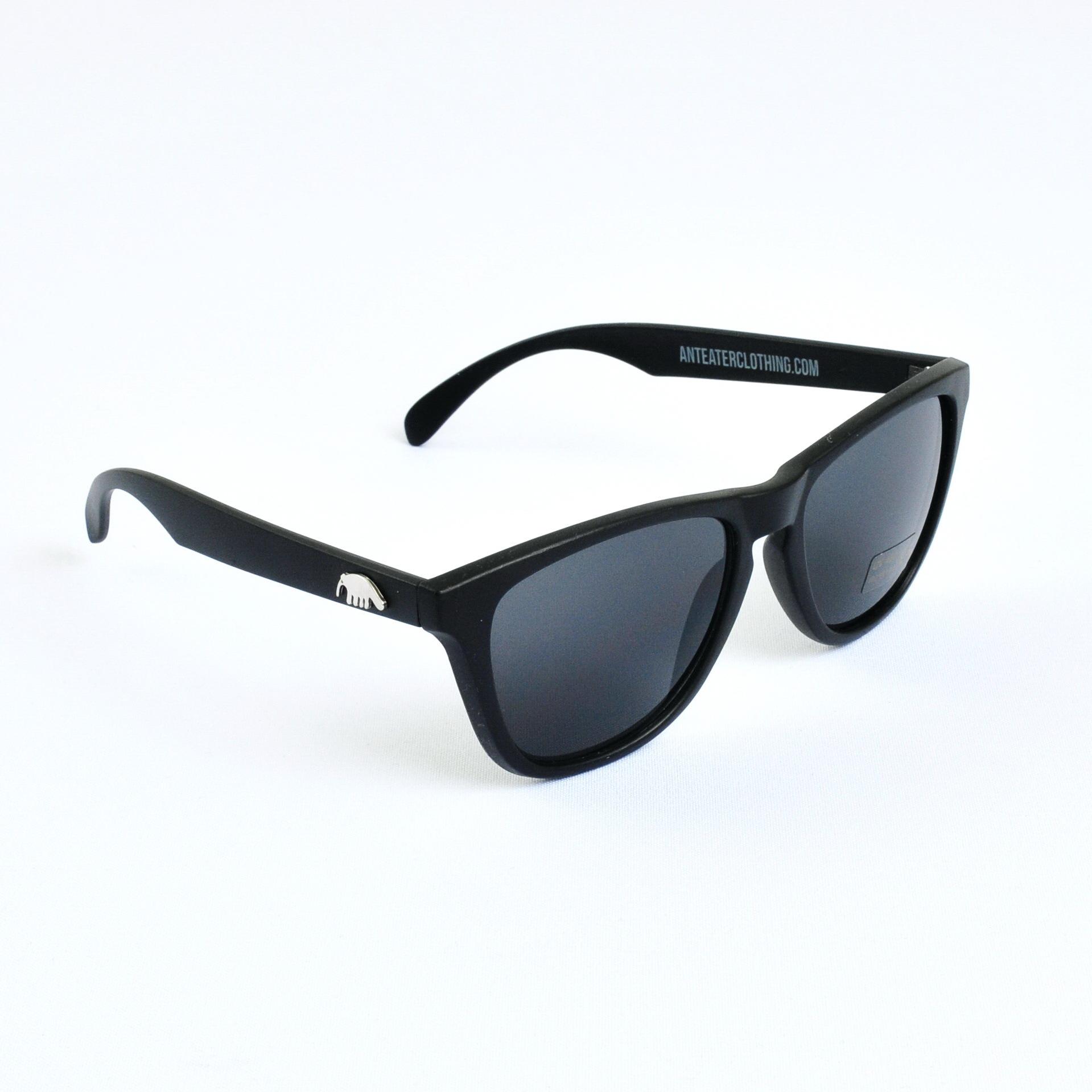 Очки Anteater Agent BLACK-MATTE