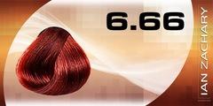 6.66 Темный глубокий красный блондин IAN ZACHARY