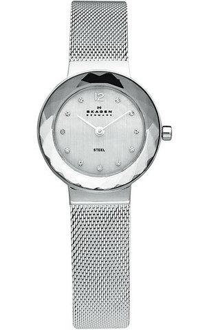 Купить Наручные часы Skagen 456SSS по доступной цене