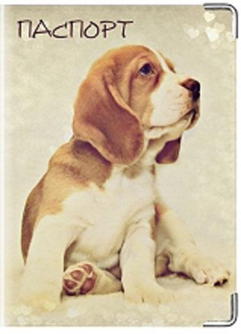 """Обложка для ветеринарного паспорта """"Ветеринарный паспорт"""" (6)"""
