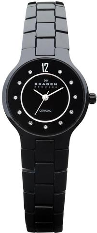 Купить Наручные часы Skagen 572SBXBC по доступной цене