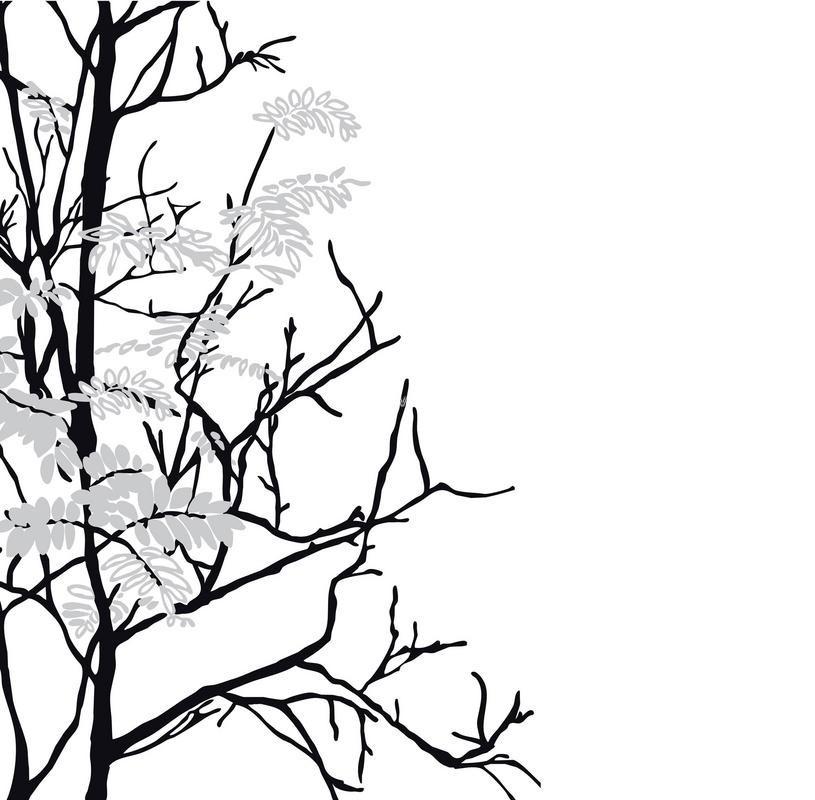 Фотообои (панно) Mr. Perswall Urban Nature P031802-4, интернет магазин Волео