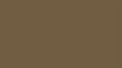 153 Краска Game Color Extra Opaque Насыщенный коричневый экстра укрывистый, 17мл