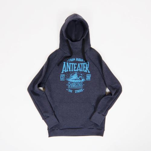 Толстовка Anteater hoodie AURORA