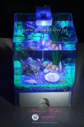Мини аквариум куб 3 л с подсветкой