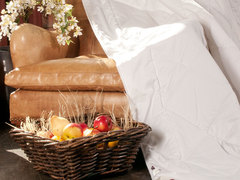 Элитное одеяло всесезонное 200х220 German Grass Merino Wool
