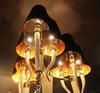 люстра Visionnaire Esmeralda by Ipe Cavalli  - Ipe cavalli ( черный ) 9 ламп