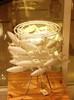 лампа School of Fish by Scabetti