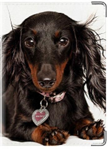 """Обложка для ветеринарного паспорта """"Такса"""""""