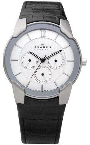 Купить Наручные часы Skagen 856XLSLC по доступной цене