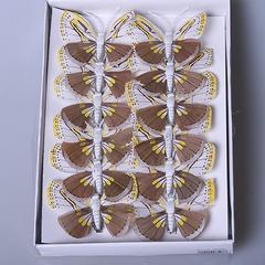 Набор бабочек 12 шт 287334